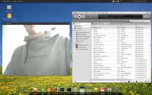 Webcam en Songbird werken probleemloos